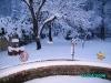 E a neve nao para...